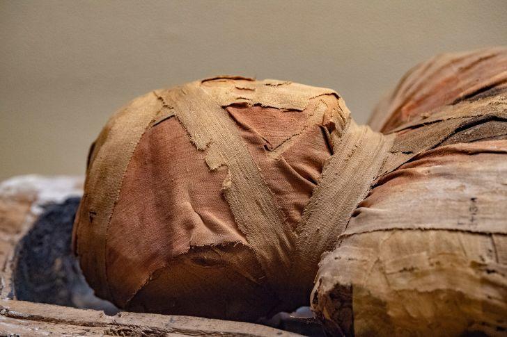 A close-up of an Egyptian mummy head
