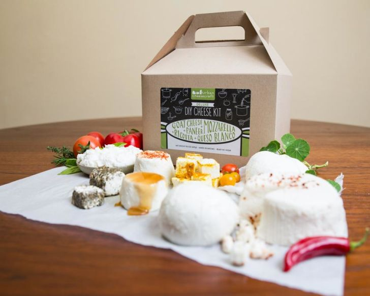 An assortment of cheeses in front of a cheese-making kit