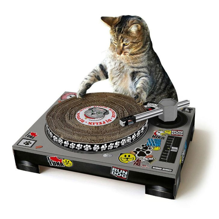 A cat uses the DJ Cat scratching pad