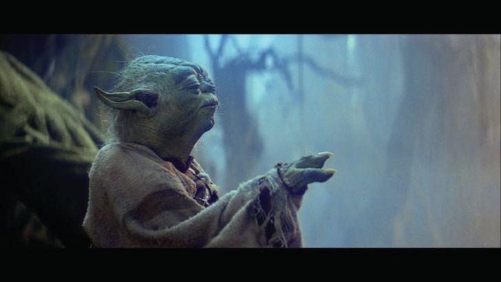 Yoda from 'Star Wars'
