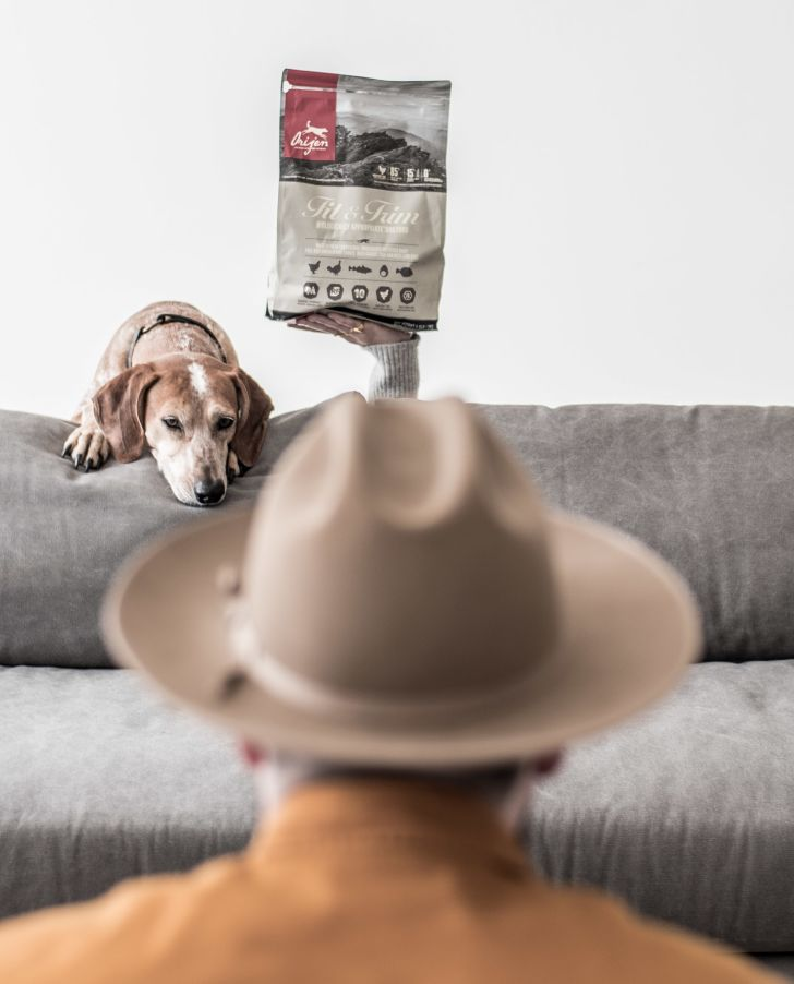 Person with hat taking photo of dog and dog food.