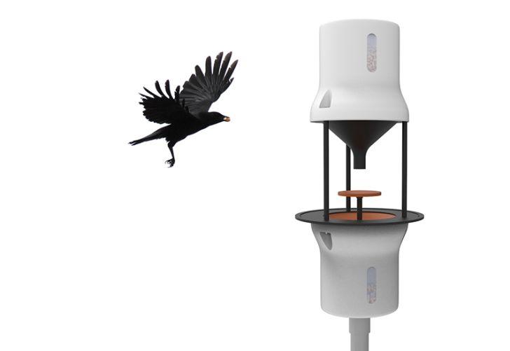 Crow flying toward machine.